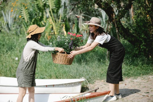 Side view of young woman in casual clothes and hat giving basket with fresh flowers to female friend in summer garden