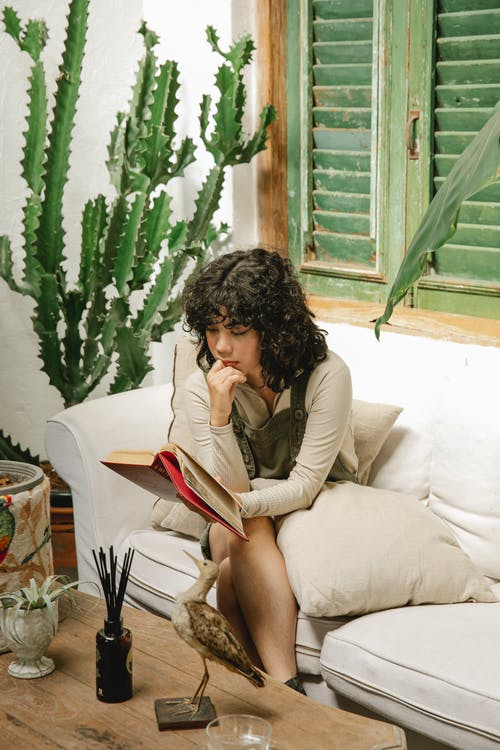 Focused woman with curly dark hair in stylish outfit sitting on sofa and reading interesting book in cozy living room with green plants