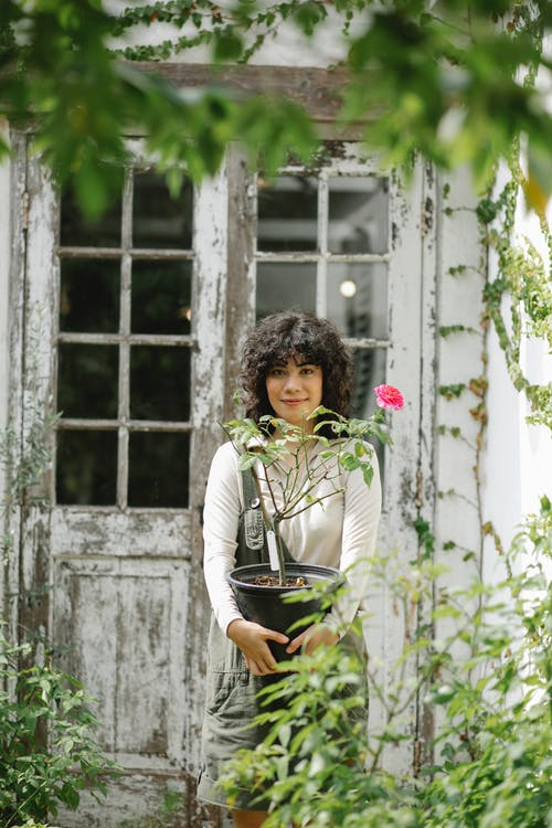 Positive ethnic woman standing with blooming potted plant while working in garden in countryside