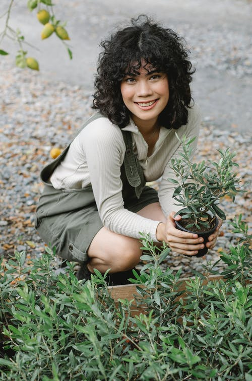 Smiling ethnic woman with potted seedling in garden