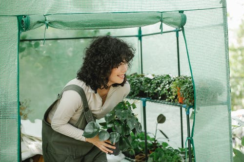 Smiling female gardener exiting hothouse with potted plant