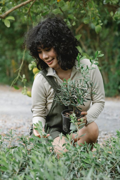 Positive female gardener checking seedlings in pots while working in green orchard with lemon tree