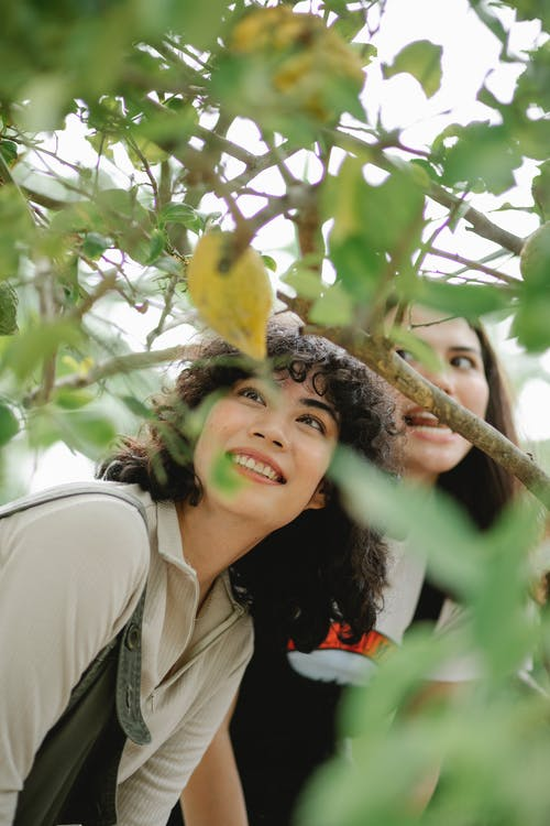 Happy diverse gardeners standing in lush orchard with lemon trees