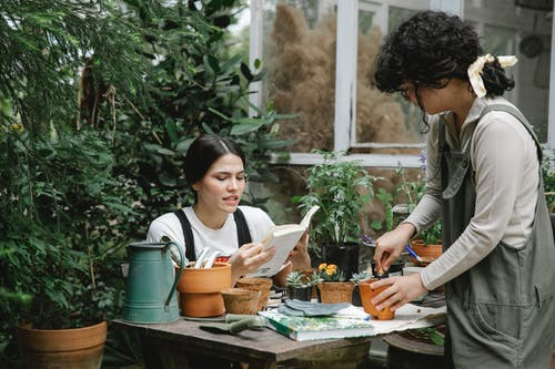 Woman sitting at table and reading gardening handbook while colleague planting sprout in peat pot in garden