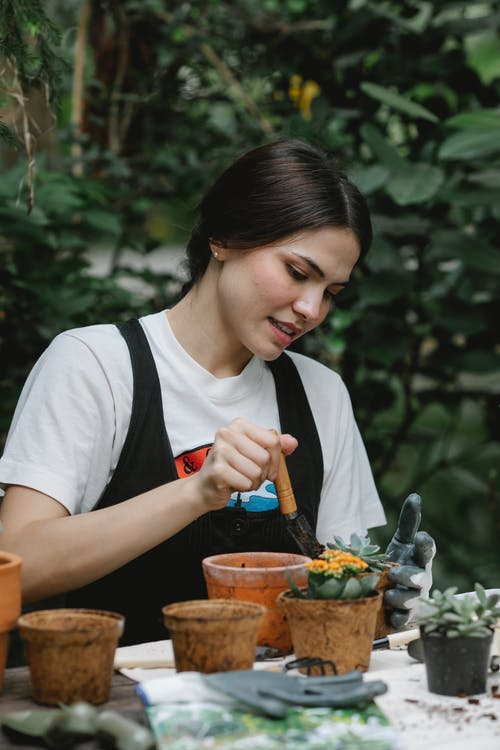 Busy female gardener in glove with small shovel planting blooming flower in pot in garden