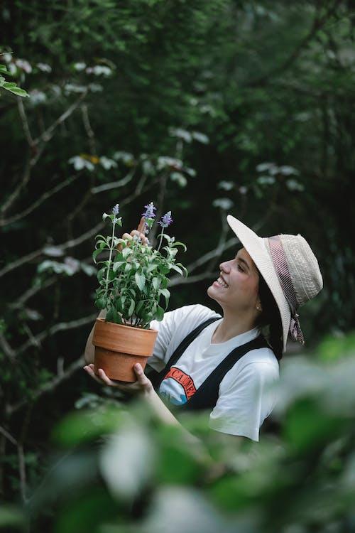 Positive female gardener with potted salvia in garden
