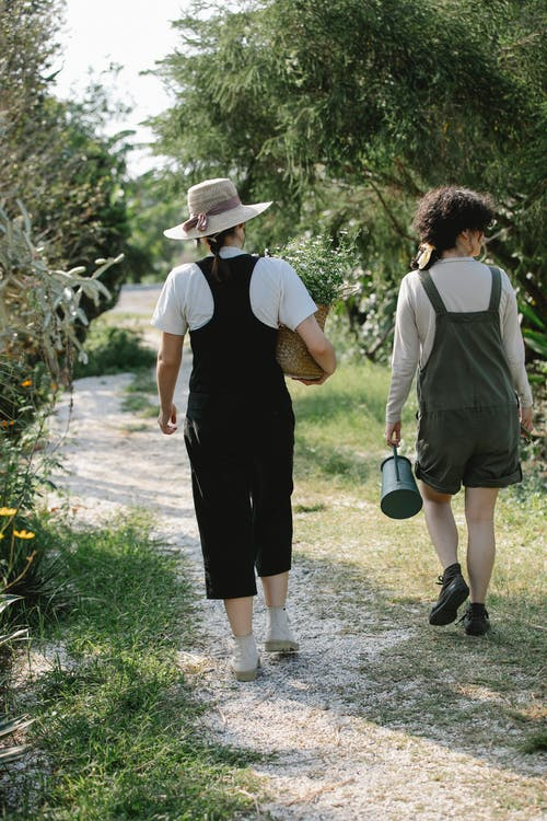 Back view full body of anonymous female gardeners carrying wicker basket of flowers and watering can in farm