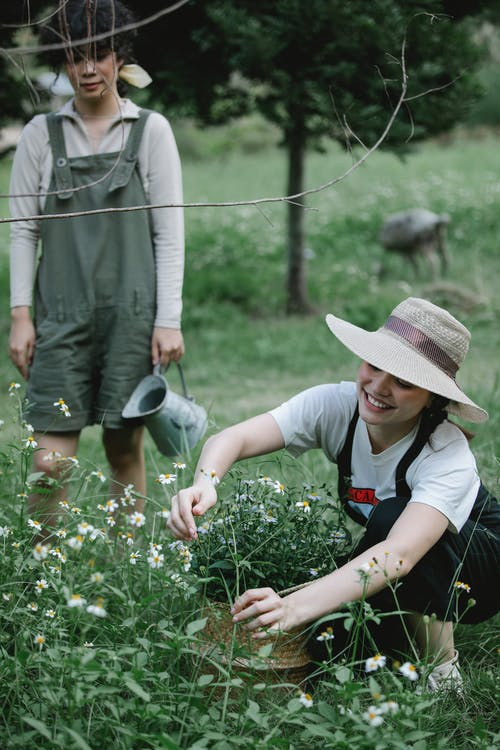 High angle of cheerful young gardener picking flowers growing in nature with colleague standing nearby