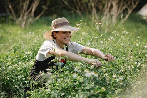 Cheerful woman cutting blooming flowers in nature