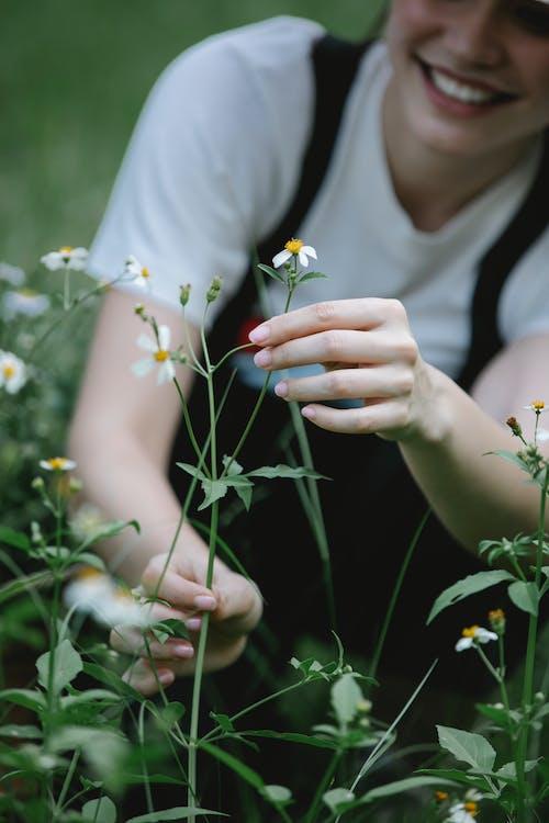 Donna In Camicia Bianca Che Tiene Fiore Bianco