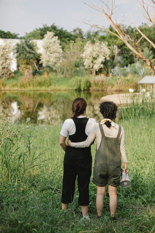 Immagine gratuita di abbraccio, acqua, albero