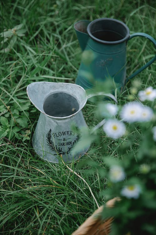 From above of pots placed on green grassy field near wicker basket with bouquet of daisy flowers in countryside in summer day
