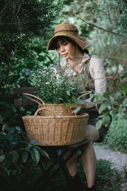 Ethnic gardener with green plant in wicker basket