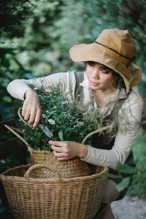 Ethnic gardener cutting stem of flowering plant in straw basket
