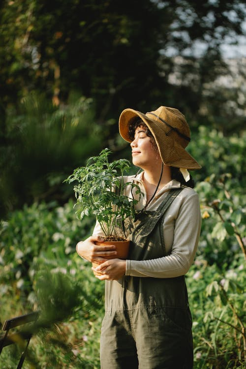 Content ethnic female grower in panama hat with potted plant and closed eyes in summer garden