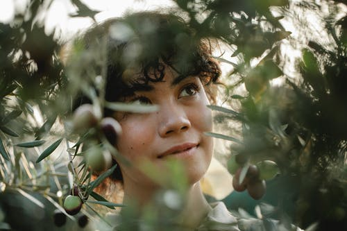 Dreamy ethnic gardener among olive branches in countryside