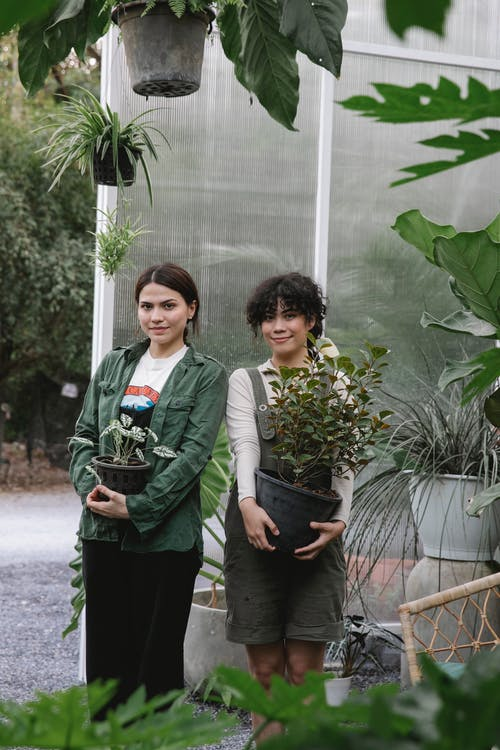 Content ethnic women with flowerpots near greenhouse
