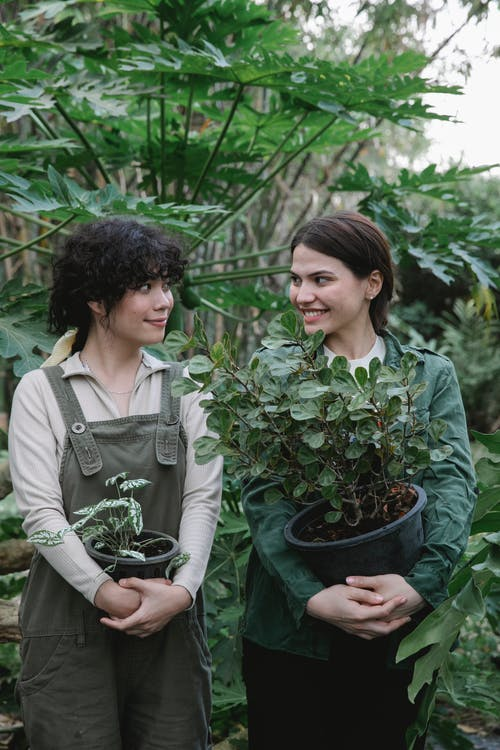 Cheerful female coworkers with flowers wearing uniform looking at each other while standing in orangery with abundance of green bush and plants