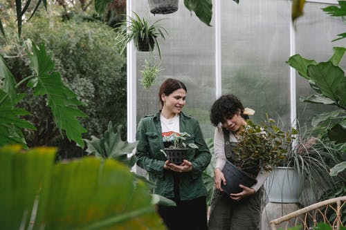 Professional female coworkers in uniform standing with flowerpots near hothouse while working in orangery with various plants with green foliage