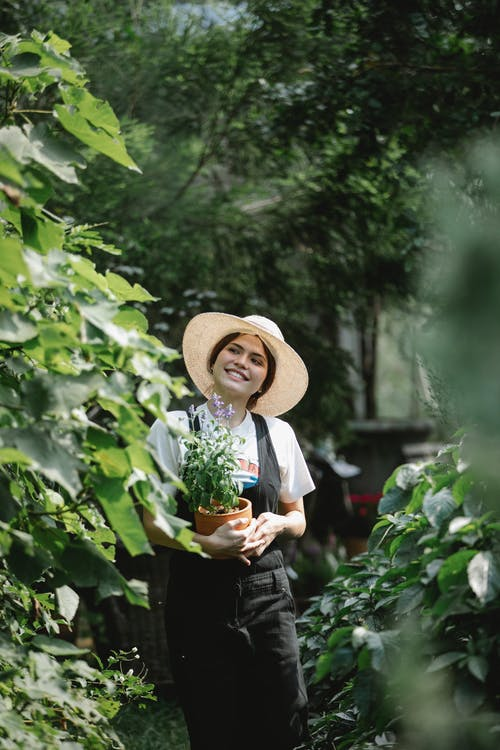 Positive ethnic female gardener in hat walking with potted plant in hands in botanical garden with lush foliage during work
