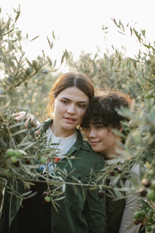 Calm female gardeners hugging while standing near blooming olive trees with green branches while working in garden on blurred background