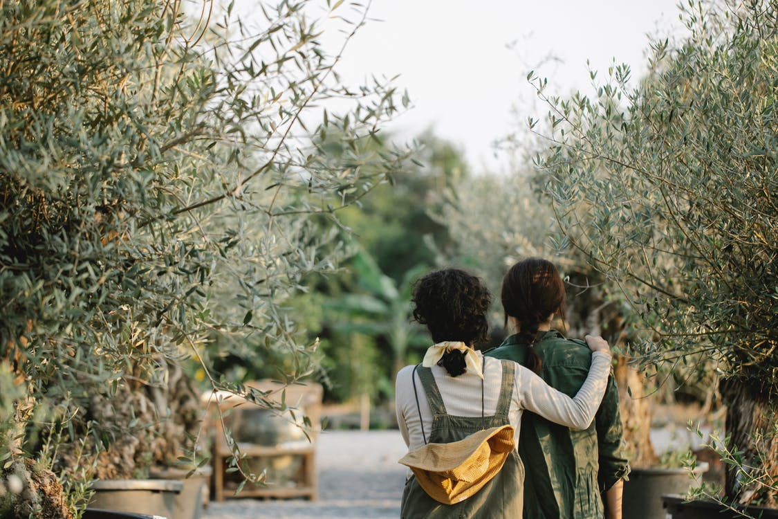 Back view of anonymous female gardeners hugging while standing in orangery with various green plants on blurred background during work