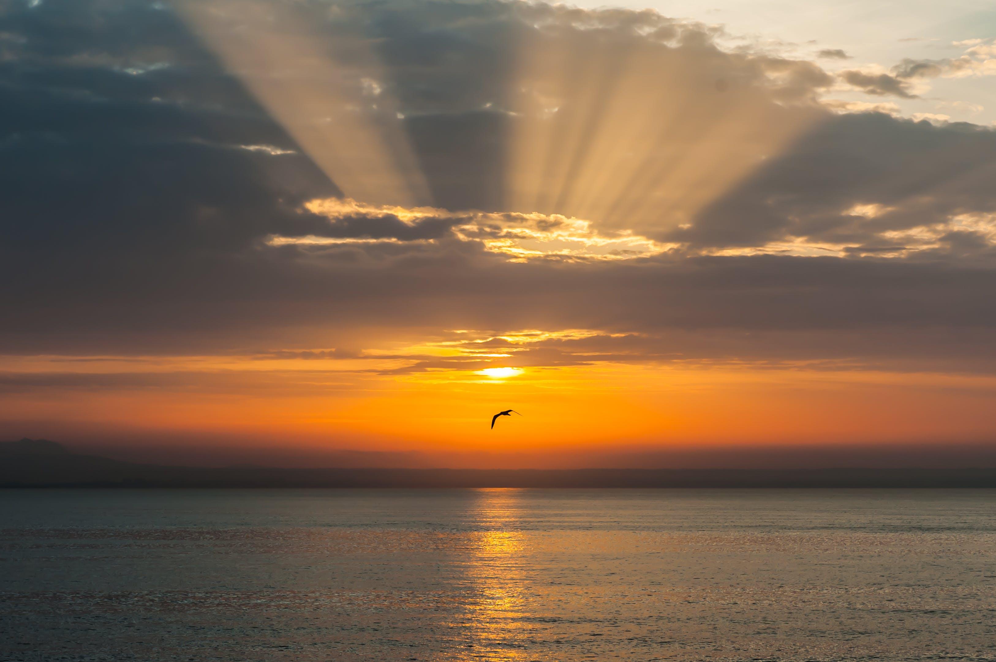 Základová fotografie zdarma na téma moře, mraky, obloha, slunce