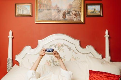 カップ, ベッド, ホールディングの無料の写真素材