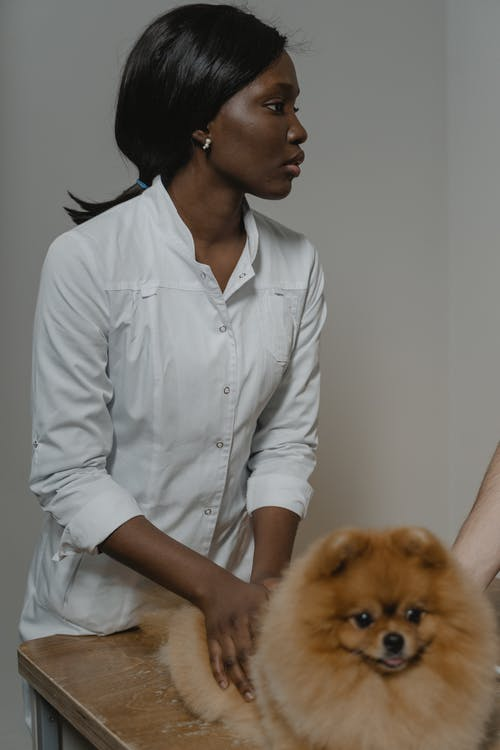 A Woman Holding a Pomeranian Dog