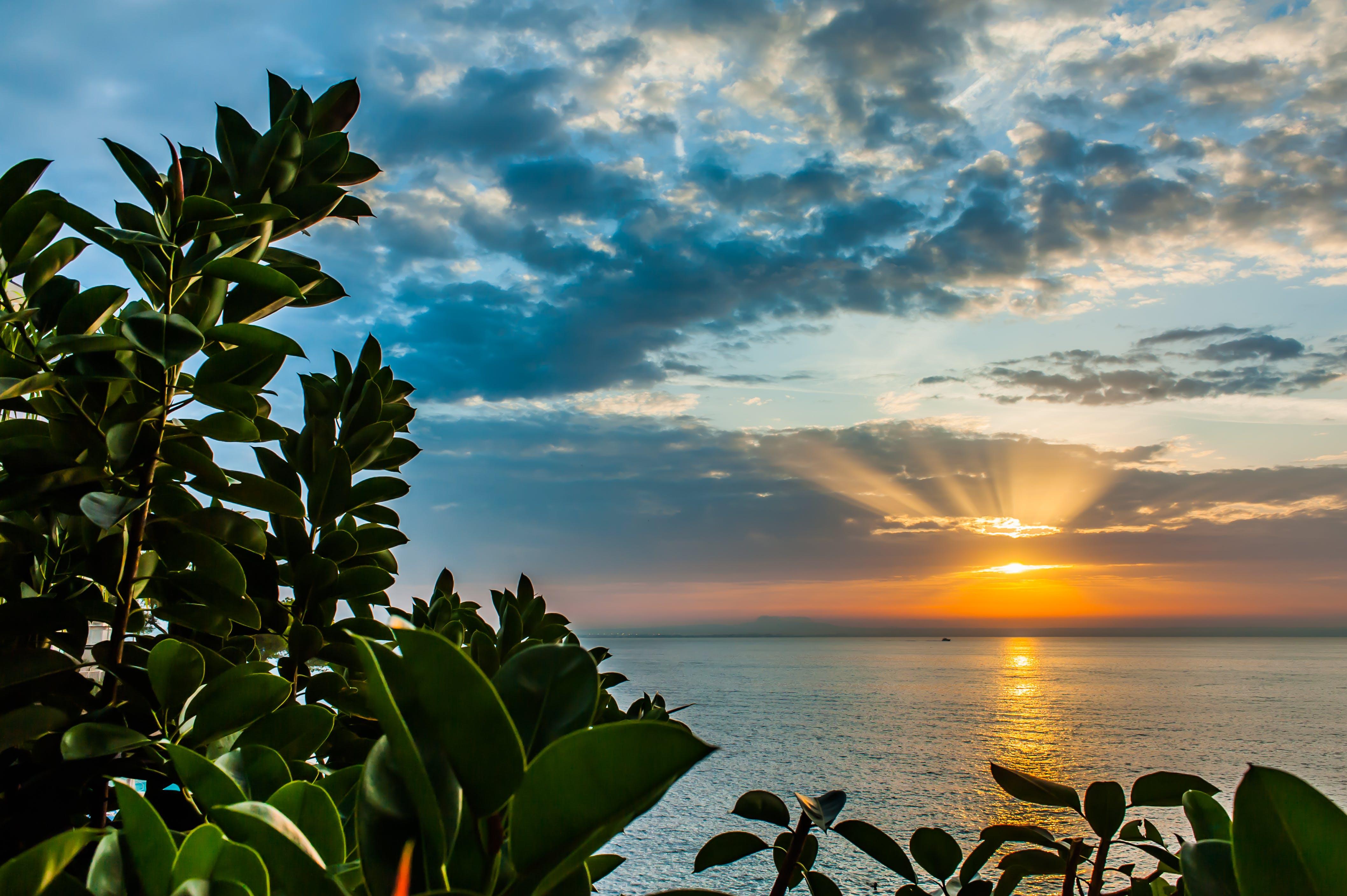 Free stock photo of sea, sky, blue, sun