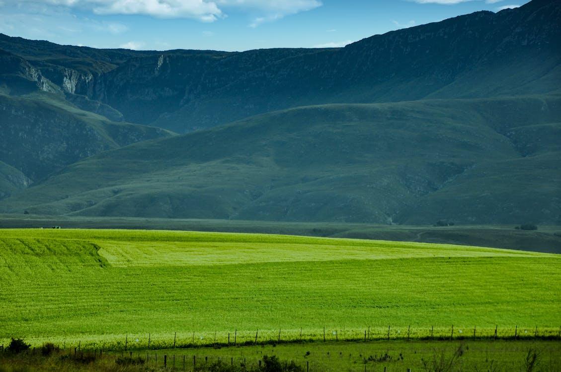 горный склон, земля, поле