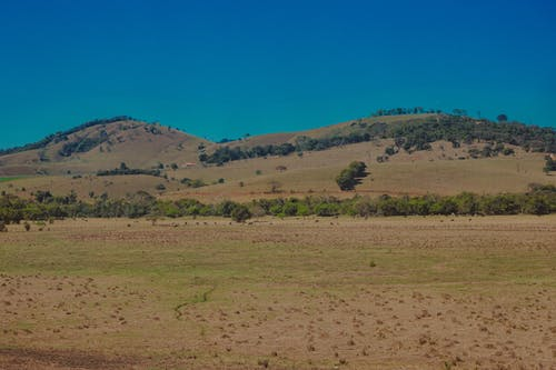 Dry meadow against hills and bushes in savanna