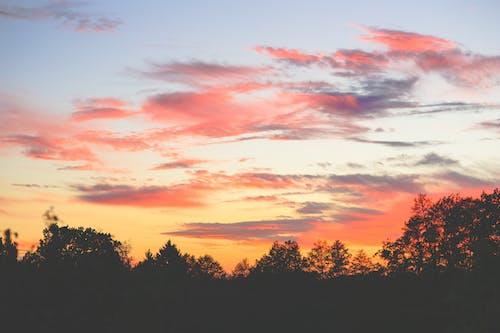 Fotos de stock gratuitas de amanecer, noche, puesta de sol