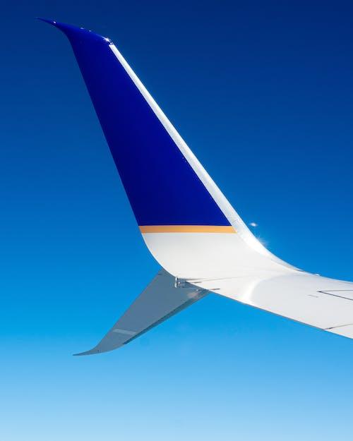 Foto stok gratis langit biru, pesawat terbang, sayap pesawat terbang