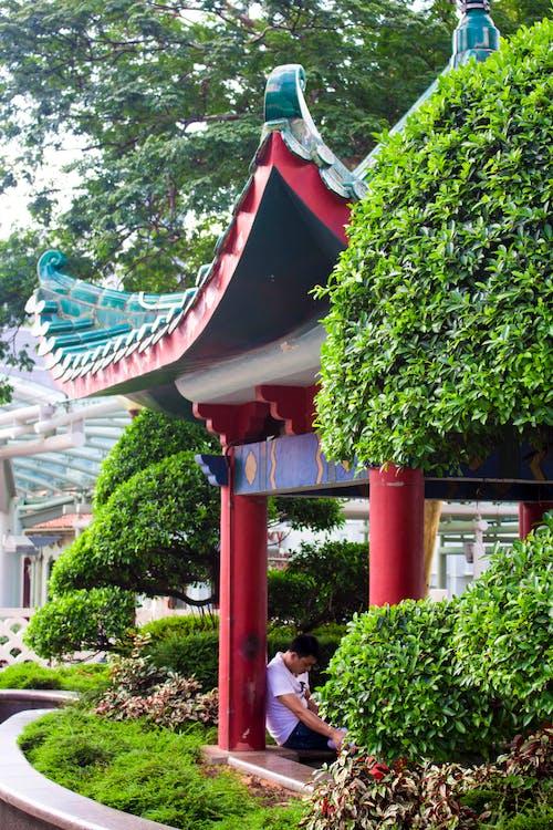 Δωρεάν στοκ φωτογραφιών με κινέζικα