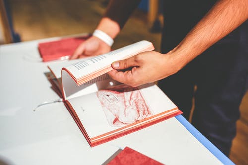 Book in men's hands