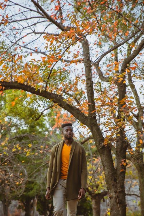 Traveling black man strolling in park in autumn