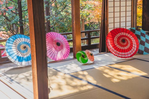 Multicolored paper oriental umbrellas placed on floor in room and on terrace near entrances in sunny autumn day near trees