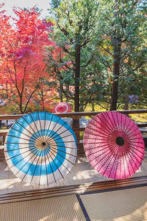 Paper Japanese umbrellas on terrace and in woods