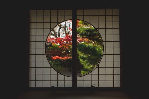 Window in Japanese style with view of trees in autumn