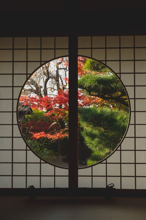 Dark room with round window in Japanese style with view of plants and trees with green and red leaves in sunny day in fall