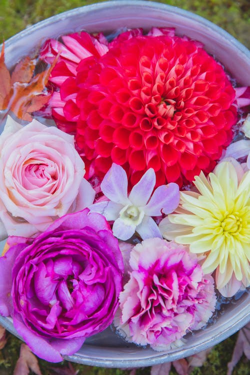 Different fresh colorful flowers in bucket in water