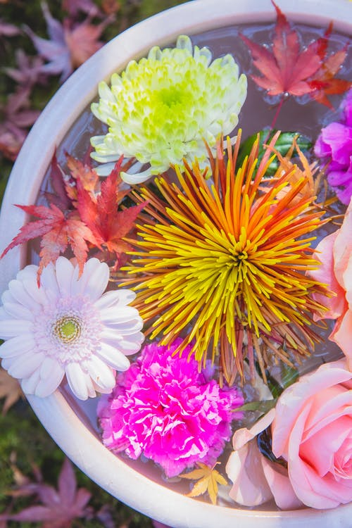 Bunch of fresh colorful flowers in water in pot