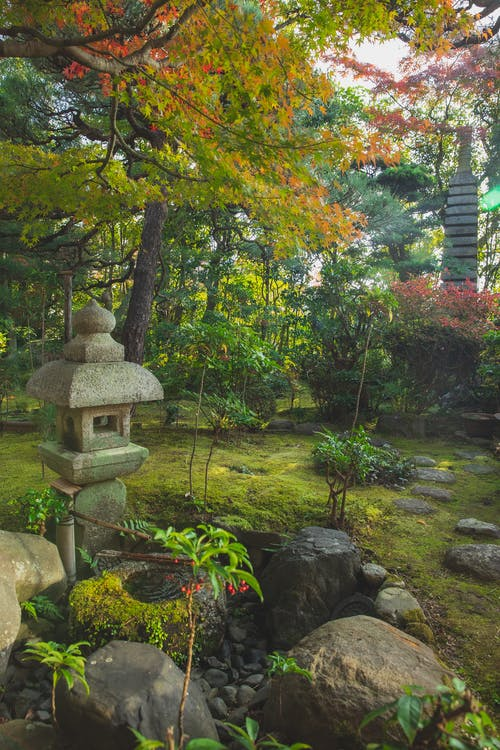 Japanese park in oriental style with mossy ground and stone structure placed near rocks and lush green trees in nature