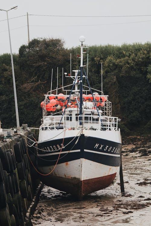 Безкоштовне стокове фото на тему «берег моря, вода, Водний транспорт, гавань»