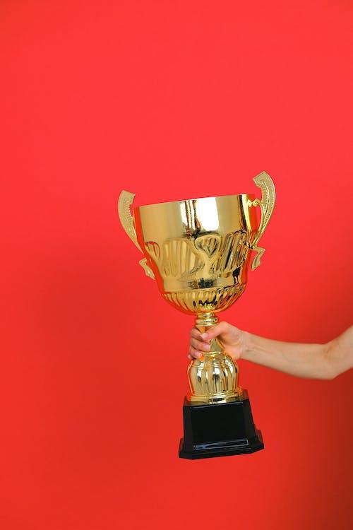 Free stock photo of accomplishment, award, bronze