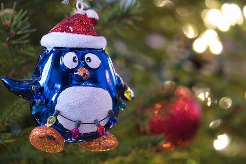 Fotos de stock gratuitas de alegre, Año nuevo, árbol