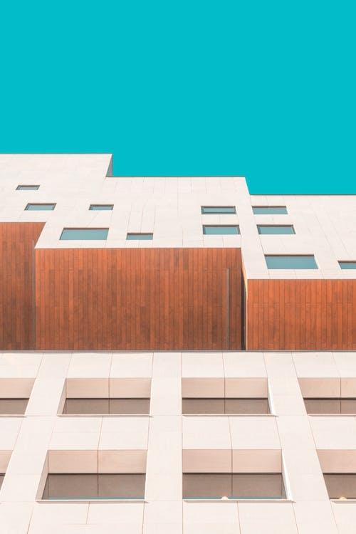Безкоштовне стокове фото на тему «Windows, архітектура, бізнес»