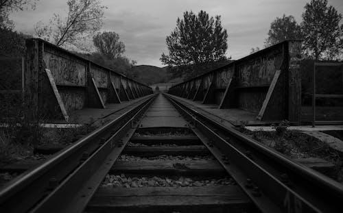 Безкоштовне стокове фото на тему «залізниця, колія, міст»