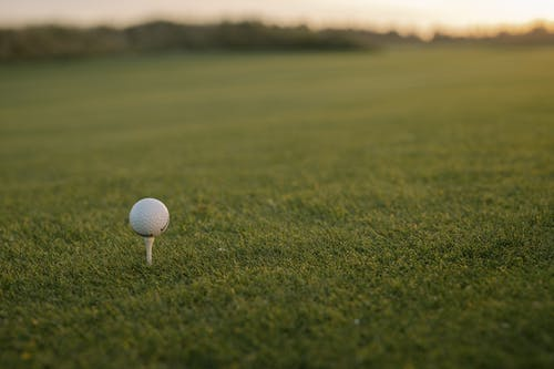 Witte Golfbal Op Groen Grasveld